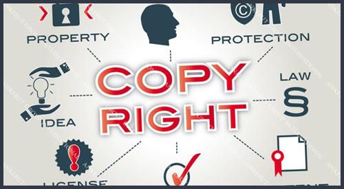Telif Hakkı Koruma